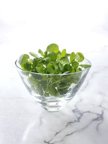 Food for Thought: Watercress