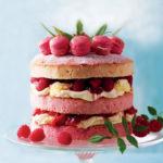 Macaron cake image